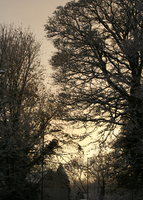 One Winters Day 2 by compactdiscface