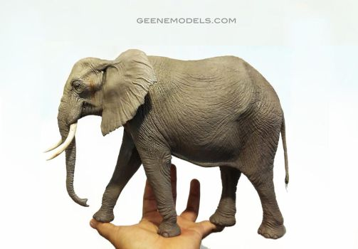 African Elephant in hand by GalileoN