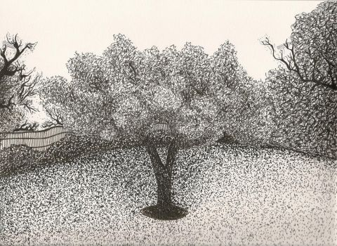 Pen and Ink trees by Johnny-Bob