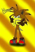 Hogger The Hedgehog .:GIFT:. by xXLisanneTheCatXx