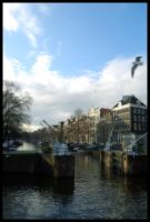 Amsterdam by Resetblue
