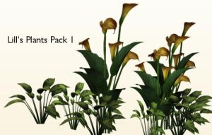 Plants Pack 1 by Lill-stock by TW3DSTOCK