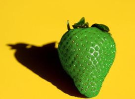 green strawberry by Damian6347177