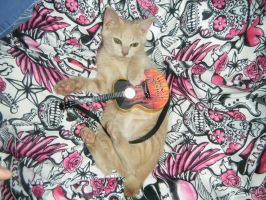 Bobi playing guitar by BobetteBelle