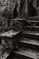 Rotting Stairs by DarkDevil72