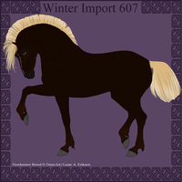 Winter Import 607 by ThatDenver