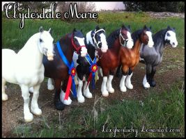 ~*Updated Clydesdale Mare Conga! 11/1/2014*~ by Lexykentucky