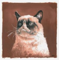 grumpy cat by bwcopy