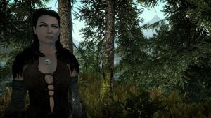 Daughter of Skyrim XX by Solace-Grace
