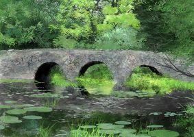 Bridge with Lilles by tonyhurst
