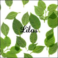 lilas by ShadyMedusa-stock