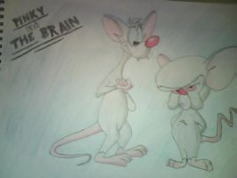 Pinky and the Brain Colored by ivegotproblams