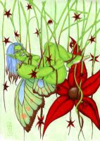 Tangled Up Faery by LimeGreenSquid