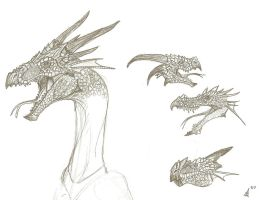 vairious dragon heads by Son-of-Italy