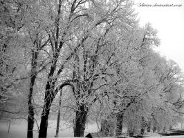 early winter. by 3divine