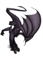 Black Dragon by Polarity-Nexus