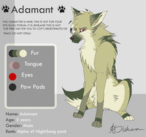 Adamant Reference Sheet by HailDawn