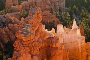 Bryce Canyon 3 by AaronPlotkinPhoto
