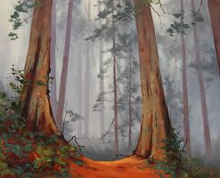 Giant Redwoods by artsaus