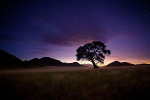 Nightfall by hougaard