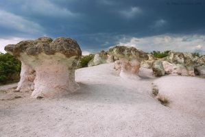 The Stone Mushrooms by tangratannakra