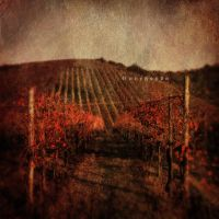 AUTUNNO by Cunegonda