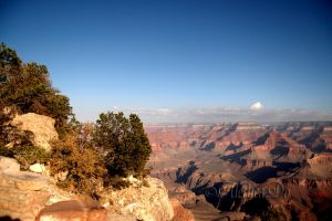 Grand Canyon XVI by AletheaDo