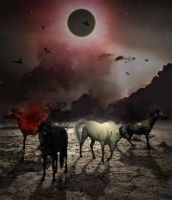 Four Horses Apocalypse by ArkosSven