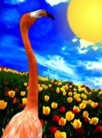 Flamingo in a field of Tulips by allison731