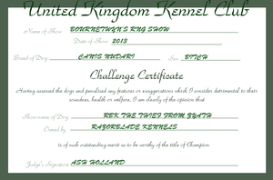 RBK The Thief from Zyath - Challenge Certificate by TheChiefofTime