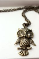 Long Owl Necklace by XxQuothTheRavenxX