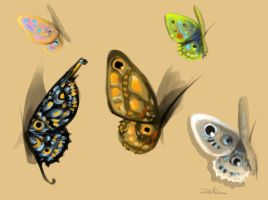 Butterfly's wings study by sweetdrawingwind