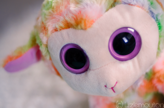 Rainbow Lamb by LizleMouton