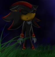 Shadow the hedgehog - Somewere by Shadoukun