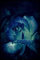 Blue When Im Without You by LovelyBPhotography
