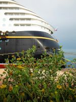 Disney Dream 13 CXVI by LDFranklin