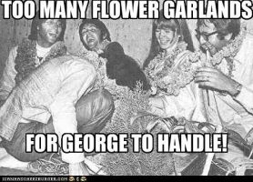 TOO MANY FLOWER GARLANDS FOR GEORGE TO HANDLE by TheOriginalBeatleBug