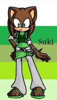 Suki....THE HEDGHOG by gamergrl