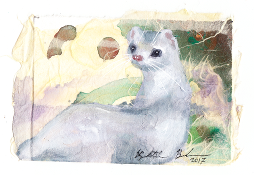 Collage Ermine ACEO by Redwall151