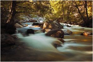 Roaring River V by BrianWolfe