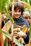 Hobbits - Stealing Corn by lokinst