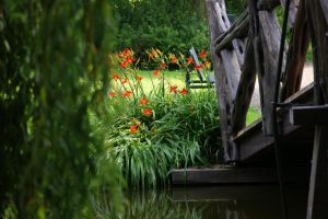 park at Gouda by picture-melanie