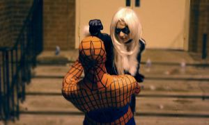 Spiderman and Black Cat Fight by whitetiger76
