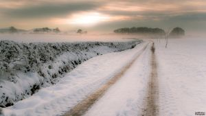 Winters day by JackMcIntyre