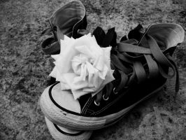 Converse Photo Contest by cegax3m