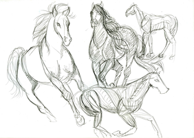 Drawing sum horseys by Killer-Browny