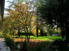 Our Front Yard in Fall by Gianni36