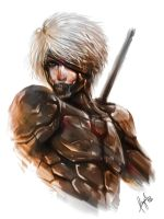raiden metal gear by wizyakuza