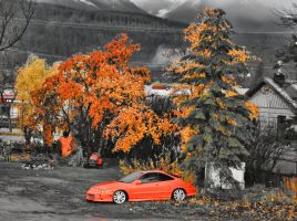 Fall Colored Car by skip2000