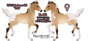 4114 Nordanner Foal by SWC-arpg